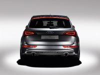 Audi Q5 custom concept, 9 of 18