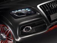 Audi Q5 custom concept, 10 of 18