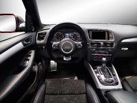 Audi Q5 custom concept, 17 of 18