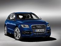 Audi SQ5 TDI, 2 of 38