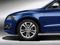 Audi SQ5 TDI, 19 of 38