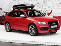 Audi SQ5 Worthersee, 1 of 13