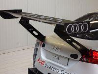Audi TT RS DTM, 7 of 10