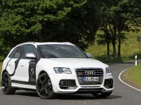 BB Audi SQ5 TDI , 1 of 12