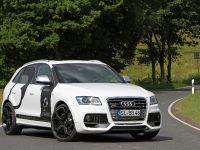 BB Audi SQ5 TDI , 1 of 12