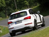 BB Audi SQ5 TDI , 3 of 12