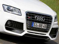 BB Audi SQ5 TDI , 5 of 12