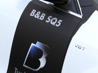 BB Audi SQ5 TDI , 6 of 12