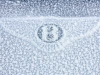 Bentley Continental GT - Power on Ice, 6 of 6