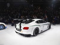 Bentley Continental GT3 Paris 2012, 11 of 17
