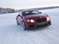 Bentley Continental GT3-R, 3 of 3