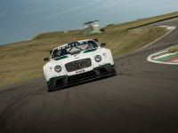 Bentley Continental GT3 Race Car, 2 of 15