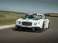 Bentley Continental GT3 Race Car, 3 of 15