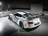 Bentley Continental GT3 Race Car, 9 of 15