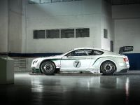 Bentley Continental GT3 Race Car, 10 of 15
