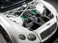 Bentley Continental GT3 Race Car, 12 of 15