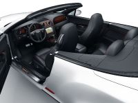 Bentley Continental Supersports Convertible ISR, 5 of 6