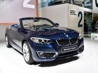 BMW 2-Series Convertible Paris 2014
