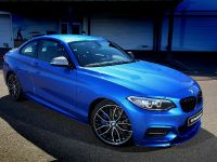 BMW 2-Series M235i Track Edition, 1 of 14