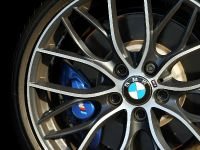 BMW 2-Series M235i Track Edition, 6 of 14