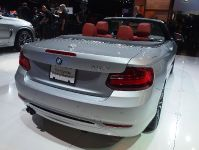 thumbnail image of BMW 228i Convertible Los Angeles 2014
