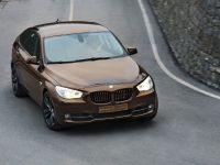 BMW 5er Gran Turismo Trussardi, 3 of 18