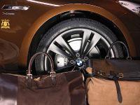 BMW 5er Gran Turismo Trussardi, 13 of 18