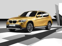 BMW Concept X1, 8 of 12