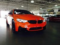 BMW F83 M4 Limerock Special Edition, 1 of 5