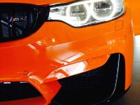 BMW F83 M4 Limerock Special Edition, 4 of 5
