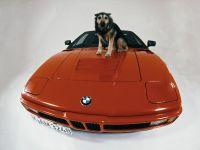 BMW M1 Procar, 9 of 16