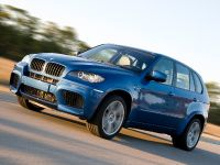 BMW X5 M, 15 of 25