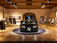Bugatti Grand Sport Vitesse Lang Lang Special Edition, 6 of 10