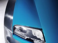 Bugatti Veyron 16.4 Grand Sport Vitesse Meo Costantini, 10 of 18
