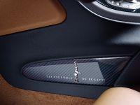 Bugatti Veyron 16.4 Grand Sport Vitesse Meo Costantini, 17 of 18