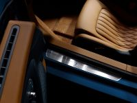 Bugatti Veyron 16.4 Grand Sport Vitesse Meo Costantini, 18 of 18