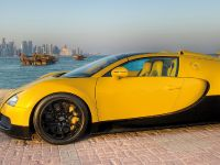 Bugatti Veyron 16.4 Grand Sport, 9 of 14