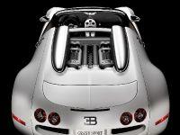 Bugatti Veyron 16.4, 1 of 2