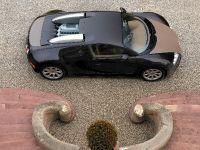 Bugatti Veyron Fbg, 4 of 19