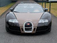Bugatti Veyron Fbg, 7 of 19