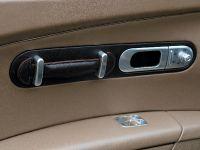Bugatti Veyron Fbg, 17 of 19