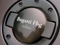 Bugatti Veyron Fbg, 18 of 19