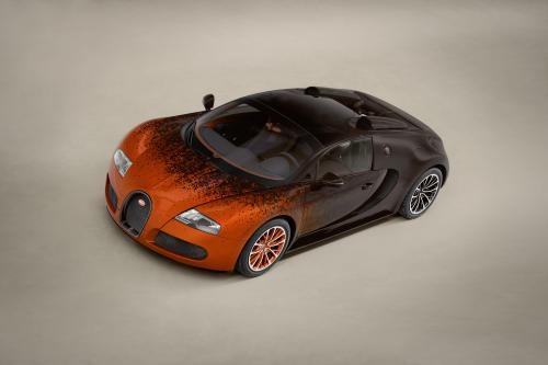 Bugatti Veyron Grand Sport Venet , 1 of 19
