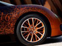Bugatti Veyron Grand Sport Venet , 7 of 19