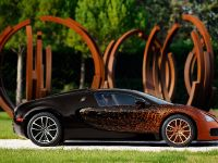 Bugatti Veyron Grand Sport Venet , 8 of 19