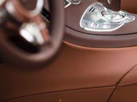 Bugatti Veyron Grand Sport Venet , 18 of 19
