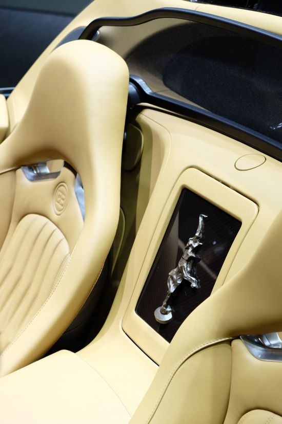 Bugatti Veyron Grand Sport Vitesse Rembrandt Geneva