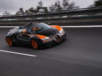 Bugatti Veyron Grand Sport Vitesse World Record Car Edition, 2 of 17