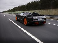 Bugatti Veyron Grand Sport Vitesse World Record Car Edition, 6 of 17