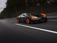 Bugatti Veyron Grand Sport Vitesse World Record Car Edition, 11 of 17